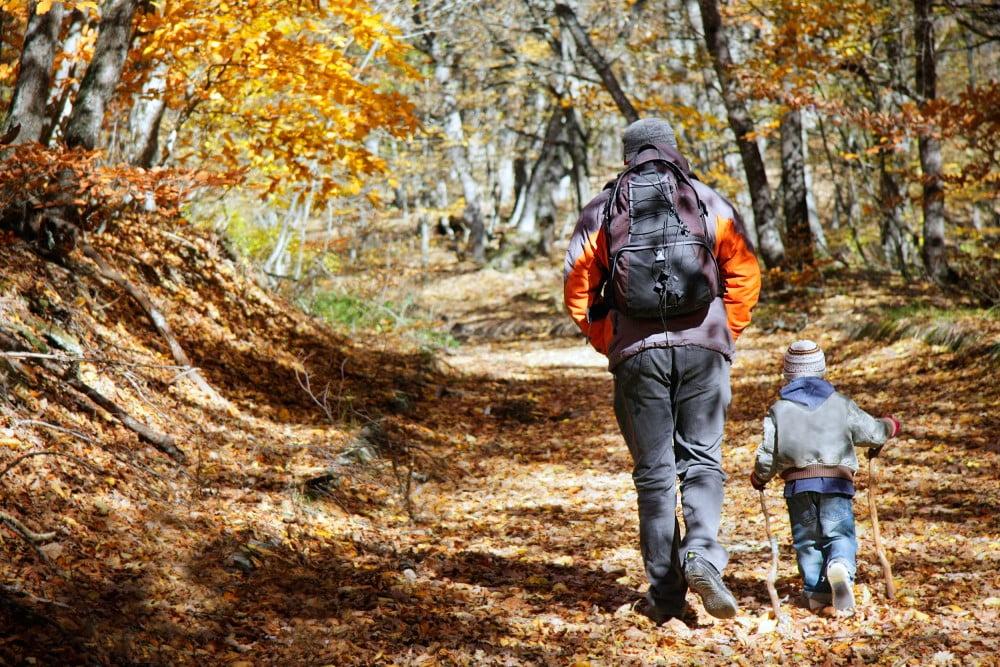 Far og søn på vandretur i skoven